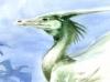 <!--:de-->Kormorandrache<!--:--><!--:en-->Kormoran dragon<!--:-->